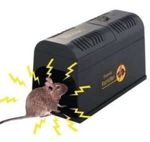 electronic rat cage
